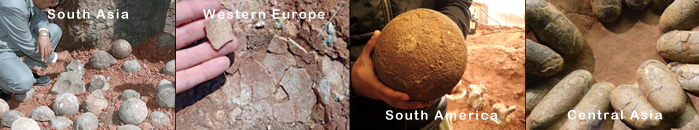Dinosaur egg fossils all over the world
